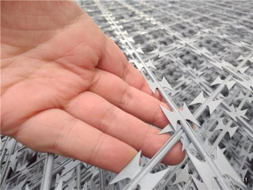 刀刺隔离网